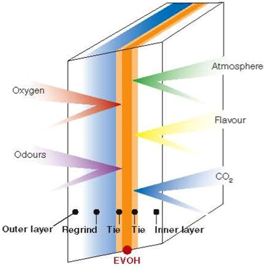 ساختار EVOH