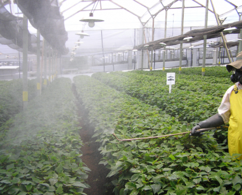 فیلم کشاورزی