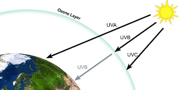 پایدار کننده UV فیلم گلخانه